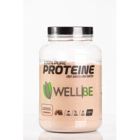 PROTEINE WELL BE CACAO KG 1